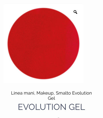 Picture of Evolution Gel nail polish 112