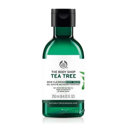 Picture of TEA TREE BODY WASH