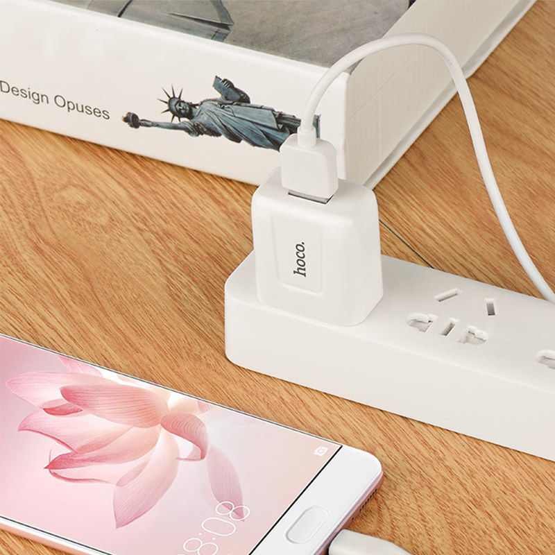 Picture of Wall Charger Hoco C2