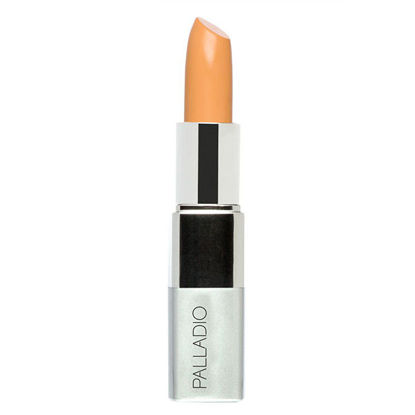 صورة PALLADIO YELLOW CONCEALER 604