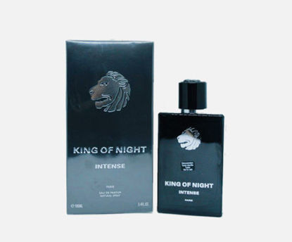 Picture of KINK OF NIGHT
