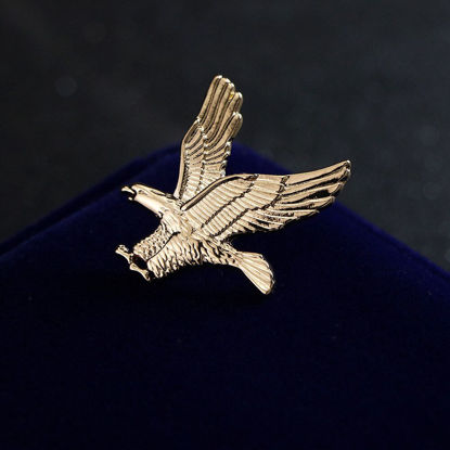 Picture of Men's Brooch Eagle Shape Design Fashion Accessory - Size:One Size