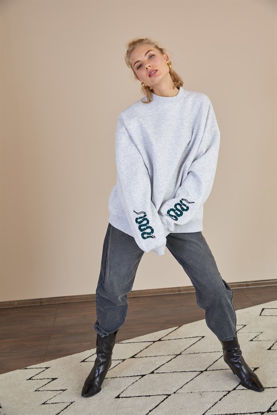 Picture of Light gray sweatshirt with snake embroidery